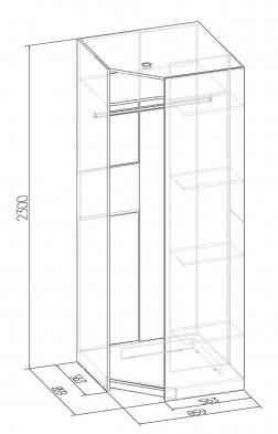 «Бриз» 56 Шкаф угловой Фасад Зеркало