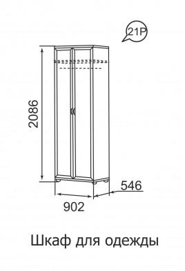 Шкаф для одежды 2-х дверный 21Р «Ника-Люкс»