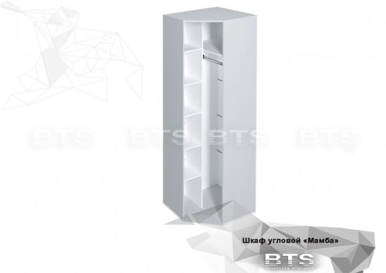 Шкаф угловой ШК-01 «Мамба»