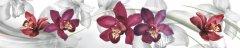 Стеновая панель «Орхидеи»
