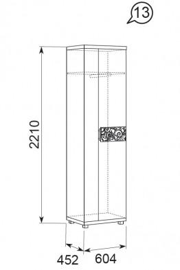 Шкаф для одежды 13 «Ирис» Бодега светлый
